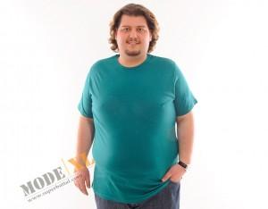 Büyük Beden Erkek T-shirt Modelleri SuperBattal.com da